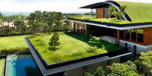 Los techos verdes son considerados con el medio ambiente