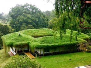 apreciar una ciudad o tan solo una edificación de techos verdes, es un suspiro para el alma, es agradable, transporta a otro ambiente